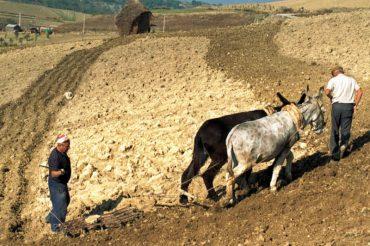 Antichi mestieri in Abruzzo e Molise